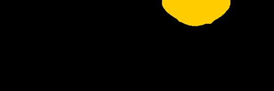 bwin logo grande